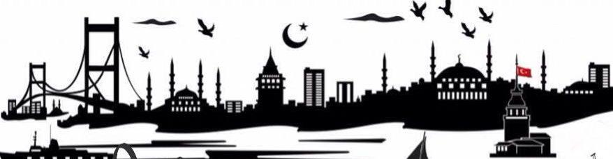 Erasmus Istanbul Housing – ERASMUS.biz – Room, Flatshare, Apartment